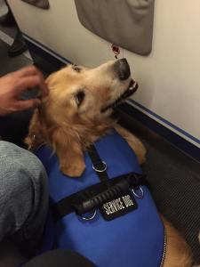 abe on plane